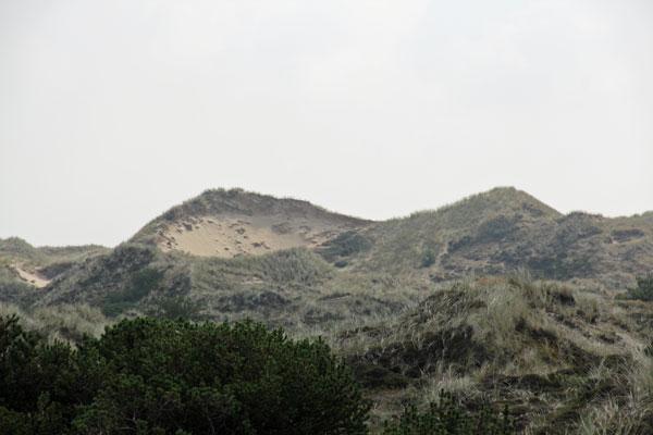 Havside-Bjerge_2_web