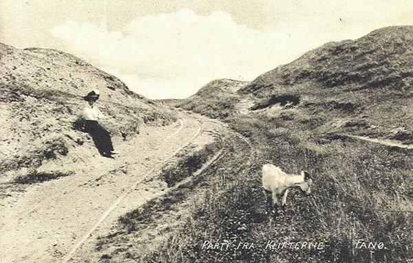 B1393_Klitparti_postkort