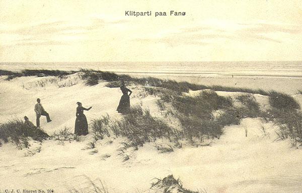 B1409_Fanoepiger-i-klitten_p