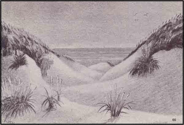 66_B1439_Klitter-ved-havet_